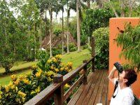 Wisata Virtual: Wisata From Home