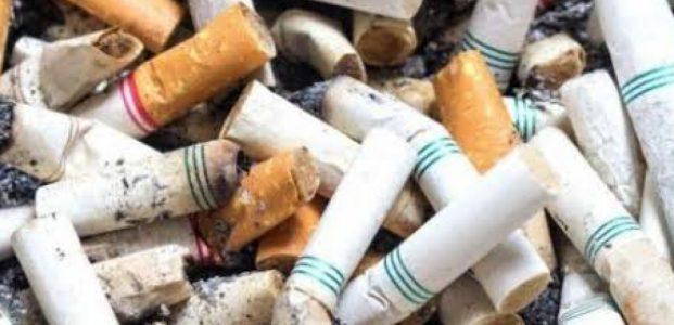 Rokok : Bagaimana Merokok Dapat Mempengaruhi Tubuh (part 1)