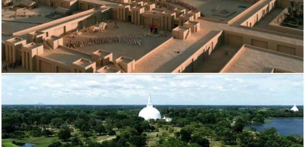 Kota Kuno : Antara Pemulia Pohon VS Penebang Pohon !