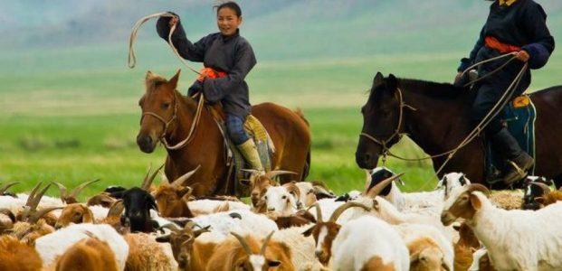Mongolia : Pertumbuhan Ekonomi Tertinggi Di Dunia Era Pandemi Covid-19 Kalahkan China, Inggris, Perancis, Rusia dan Amerika Serikat !