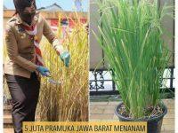 Bandung : ' Nga- Bandung -an ' Saksi Sejarah/Pejuang/Petarung ' Banda ' Harta ' Indung ' Bumi, Tanah, Air & Atmosfir Ibu Pertiwi !