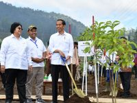 Presiden Akan Tanam Pohon Tanda Revitalisasi Sungai Citarum di Jawa Barat