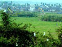 Kampung Belekok: Sentra Edukasi Maghootisasi Di Wilayah Pusaran Teknopolis